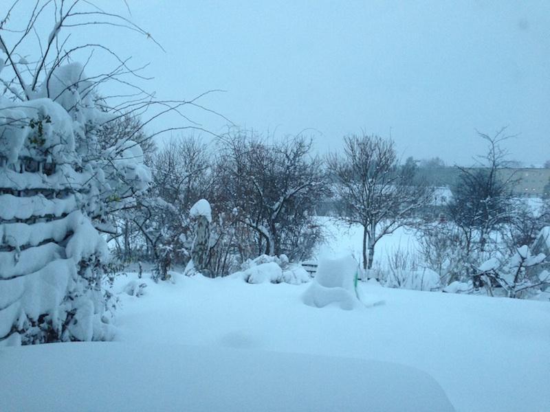 Winterish afternoon in Stockholm, 5 Dec 2012.