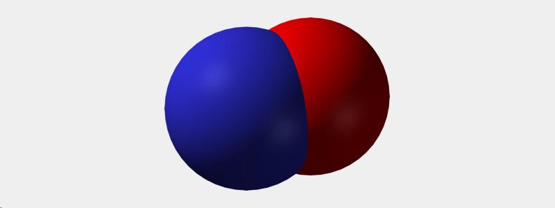 Non-Invasive Nitric Oxide in Neonates