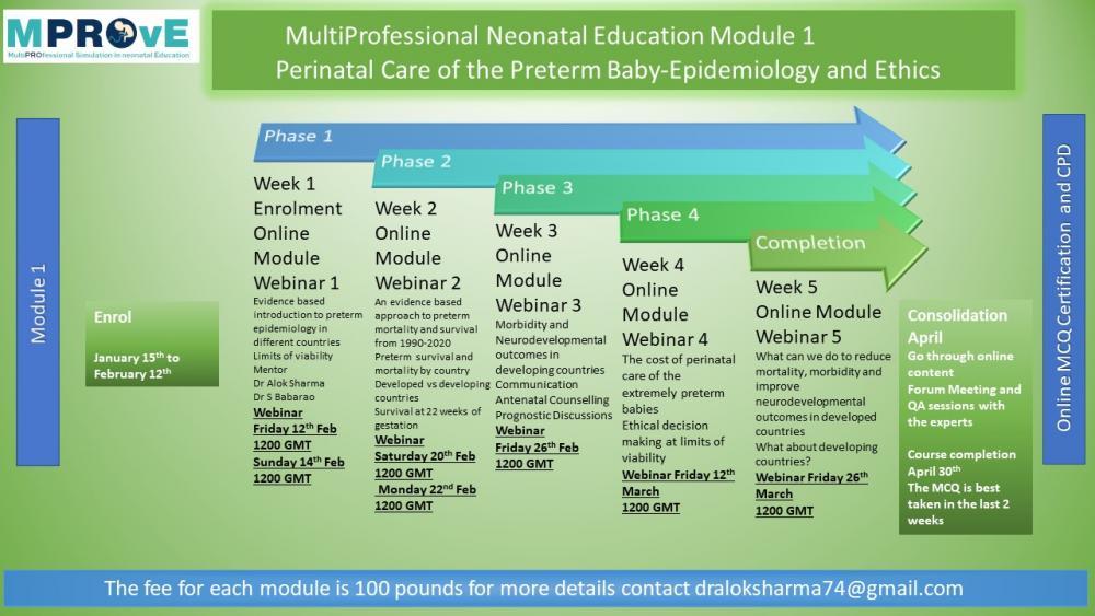 Perinatal Preterm Epidemiology and Ethics.jpg