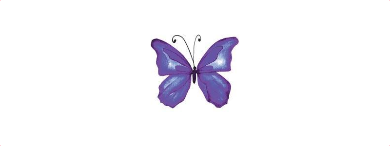 """Join our webinar  on """"the Butterfly project - loss of a baby from a multiple pregnancy"""""""